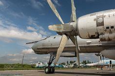 Tupolev Tu-142 by olavdewith
