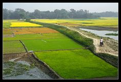 From Bangladesh. Bangladesh Flag, Lonely Planet, Nature Pictures, Places Ive Been, Countries, Travel Inspiration, Cool Photos, Travel Photography, Asia