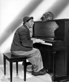 Chico Marx playing requests for his kitty.