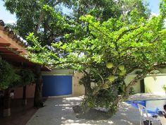 Our Life in Medellin Colombia: Santa Fe en Antioquia - 9th June 2016