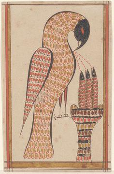 rmn small pelical vico)