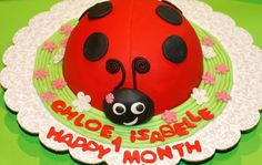 LadyBird/Bug Cake to celebrate Chloe's 1st Month (inspired by Debbie Brown's 50 easy party cakes)