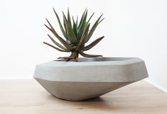 steen-planters