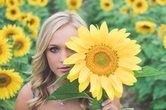 Amy Brownridge - Seniors. Dramatic portrait in a field of sunflowers