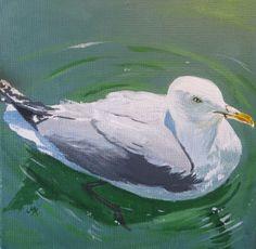 Original Painting - Paddling Seagull £35.00