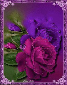rose bellissime.gif - Rose glitter grafica glitter immagini fiori gif animate-Roses glitter graphics glitter flowers animated gif images Grafica glitter per i vostri spazi web COPIA IL CODICE PER AGIUNGERE QUESTA IMMAGINE NEL TUO SPAZIO: Rose