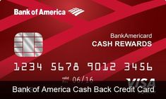 Bank of America Cash Back Credit Card Credit Card Reviews, Credit Card Offers, Digital Wallet, Credit Card Statement, Online Cash, Accounting Information, Rewards Credit Cards, Bank Of America, Credit Card Interest