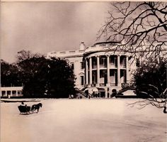 1962 Kennedy White House Christmas Card of Mrs. Kennedy driving Caroline's pony, Macaroni, pulling a sleigh on the snowy south lawn approaching the White House