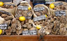 Oysters at London Borough Market | sophie made this