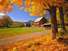Beautiful Autumn Barn Photos - Fall Foliage Pictures - Country Living - Rachel Kramer/Flickr Creative Commons