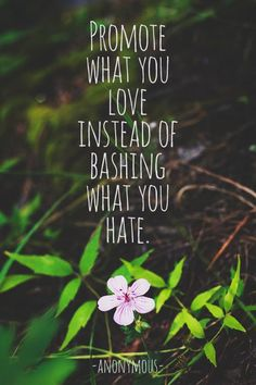 Promote what you love instead of bashing what you hate. Anon.