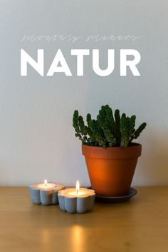 Monthly Makers – NATURE Anna María Larsson ljusstakar i betong Concrete Candle Holders, Planter Pots, Anna, Diy Projects, Craft Ideas, Candles, Creative, Nature, Crafts