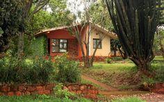 Cabin, House Styles, Plants, Home Decor, Decoration Home, Room Decor, Cottage, Planters, Plant