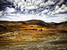 Images from the bus ride to Cradle Mountain National Park Tasmania. Captured and edited on iPhone 6s. #tassie #tasmaniagram #tasmania #australia_oz #australiagram #australiagram_mobile #landscape #landscapes #landscapehunter #landscape_lovers #landscape_captures #natgeo #nature #natureonly #natureaddict #nature_shooters #naturephotography #nature_perfection #natgeolandscape #naturelovers #naturesbeauty #nature_seekers #iphone6sphotography #discovertasmania #busride #cradlemountain…