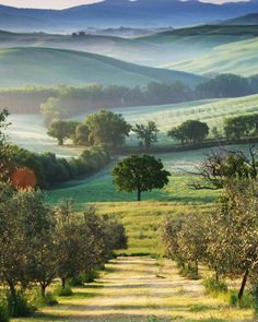 Belvedere, La Toscana, Italia.
