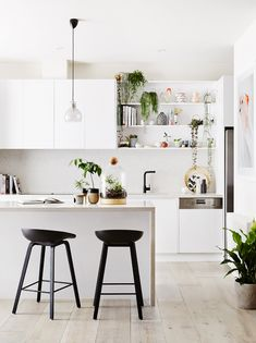 8 Stylish Ways To Decorate Live With Plants Luxury Kitchens Decorate live plants Stylish ways Modern Kitchen Interiors, Luxury Kitchen Design, Best Kitchen Designs, Luxury Kitchens, Interior Design Kitchen, Home Kitchens, Kitchen Ideas, Tuscan Kitchens, Kitchen Planning
