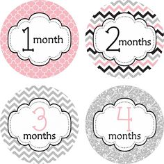 Little LillyBug Designs - Monthly Baby Stickers - Pink and Grey Chevron