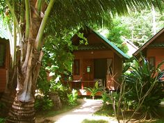 Obsessed with bungalows.    Ko Chang, Thailand. http://www.martinstrong.com/thai/Trat.html