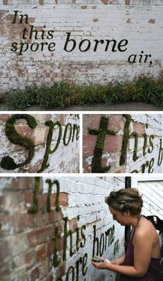 wall art using moss. You could write your name on the wall with a living art piece or graffiti. This is really cool if you can get it thriving.