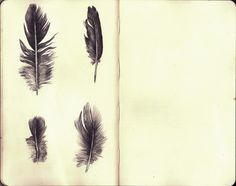 feather ... The one in the upper right corner will be feather that I am getting on my shoulder