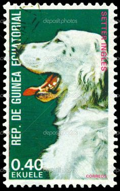 English Setter postage stamp