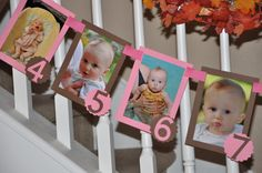 12 Month Photo Banner  Pink & Brown by uniquelymedesigns on Etsy, $20.00