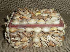 Seashell Box.