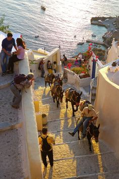 Donkey ride in Santorini,Greece. Already done this....but can't wait to do it again with my daughter Natalie in a couple of weeks!!!
