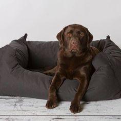 Rebel Petz Box Comfortabele Hondenmand in Antraciet, Taupe & Zwart