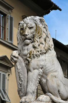 All sizes | Florence Basilica of Santa Croce Lion Statue | Flickr - Photo Sharing!