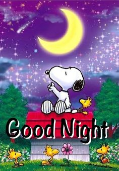 Good night Baby! I love you! I hope you had a nice day! Pleasant dreams!