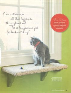 Lowe's Creative Ideas – July/August 2009 Kitty Kingdom….custom window seat is … - Belezza,animales , salud animal y mas Cat Window Perch, Cat Perch, Lowes Creative, Creative Ideas, Ideal Toys, Cat Shelves, Cat Room, Animal Projects, Diy Projects