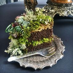 The original Woodland Wedding Cake slice at the Northwest Flower & Garden Show (mix: dirt. top with moss and succulents. Deco Floral, Floral Cake, Arte Floral, Floral Design, Moss Cake, Pocket Garden, Decoration Evenementielle, Fleur Design, Garden Cakes