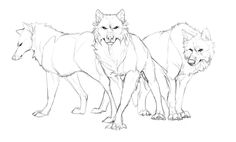 Drawing Wolf Pack Hunters New Ideas Animal Sketches, Animal Drawings, Art Sketches, Wolf Drawings, Drawing Animals, Anime Wolf Zeichnung, Wolf Base, Tier Wolf, Anime Wolf Drawing