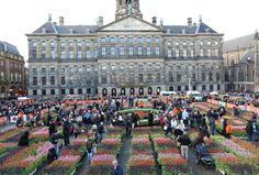 16-01-2016 - Een evenement dat je zeker niet mag missen is natuurlijk de aftrap van het tulpenseizoen met de Tulpendag op de Dam in Amsterdam.