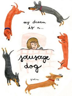 """my dream is a..."" illustration by Giulia Sagramola ... Do you own an Dachshund? Then you should check this report: http://tipsfordogs.info/90dogtrainingtips"