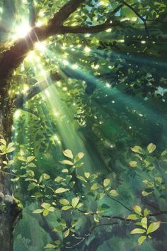 #Nature -  Sunlight Through the Trees from The Secret World of Arrietty by Studio Ghibli (edge of Forest of Shade)