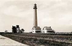 Cape May New Jersey NJ Cape May Lighthouse Collectible Antique Vintage Postcard