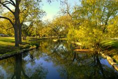 Comal River, Landa Park, New Braunfels,Texas