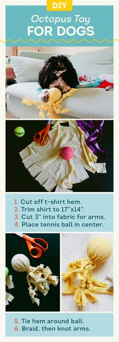 If you have some t-shirts, you have everything you need to make this DIY dog toy at home.