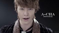 A- CHA DONGHAE