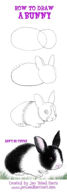 A short and simple tutorial on How to Draw a Bunny....colored pencils Hippity Hop & off ya go, give it try!: