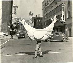 You Fill Me with Inertia: Photo Vintage Photography, White Photography, Weird Old Photos, Vintage Oddities, Pet Birds, Vintage Photos, Simple, Art Direction, Creepy