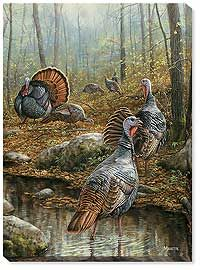 Backwater Passage - Wild Turkey by Rosemary Millette