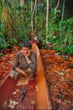 Machiguenga man carving canoe, Manu National Park, Peru