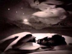 Dormeau pe o frunza doua stele- Mirabela Daurer Stele, Music Songs, Youtube, Youtubers, Youtube Movies
