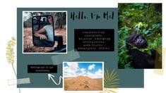 Melanie van Zyl - Freelance Travel Writer and Destination Photographer Forbes Africa, Responsible Travel, Travel Magazines, Field Guide, Africa Travel, Solo Travel, Wilderness, Adventure Travel, Storytelling