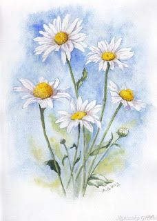 watercolors and books: GALLERY Watercolor Art Lessons, Watercolor Painting Techniques, Painting & Drawing, Watercolor Paintings, Watercolors, Daisy Drawing, Daisy Painting, Watercolor Flowers Tutorial, Floral Watercolor