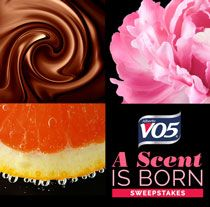 Win $2,500 cash and a year's supply of VO5 Products!