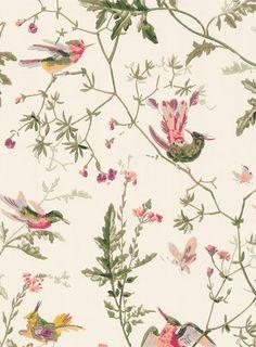 Ganz klassische Vogelmotive:Tapete Hummingbirds von Cole & Son in Cremeweiß #britisch #englisch #design #schlafzimmer